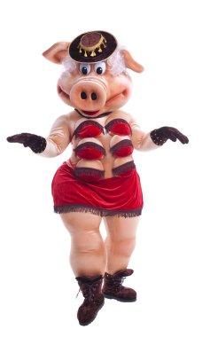 Pig mascot costume dance striptease in hat