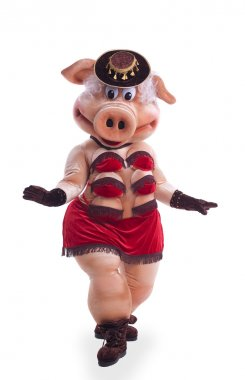 Pig mascot costume dance striptease in hat