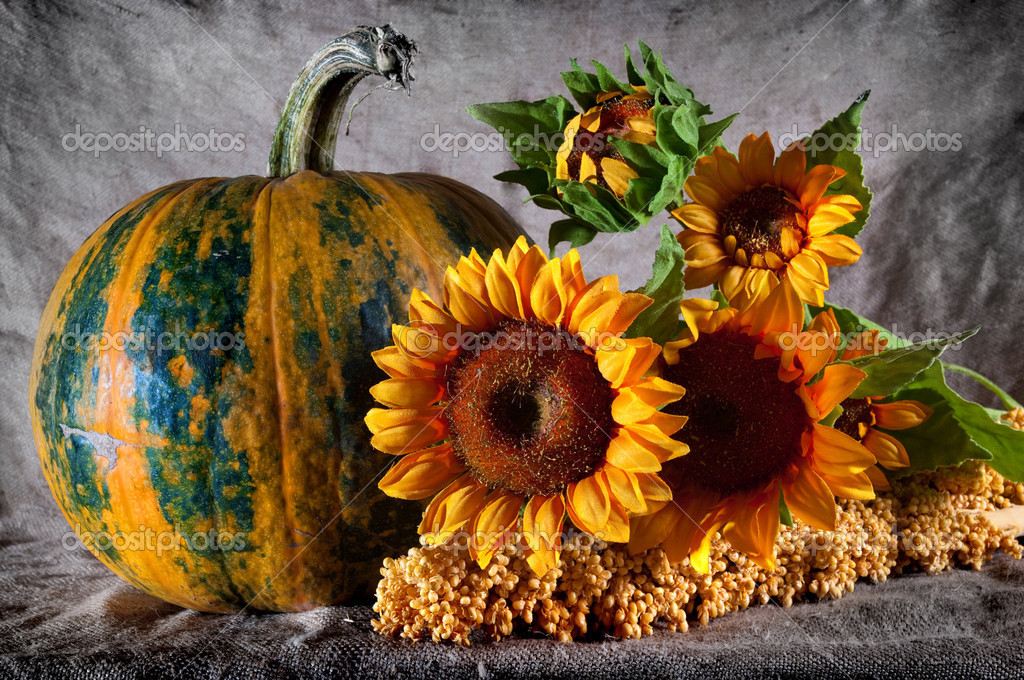 Still life with pumpkin and sunflowers