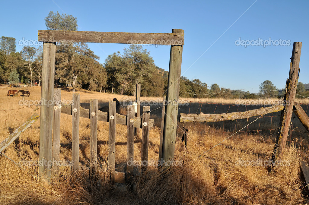 Worn Fence Field Gate