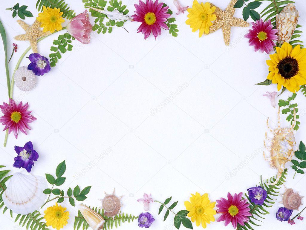 Floral frame-017