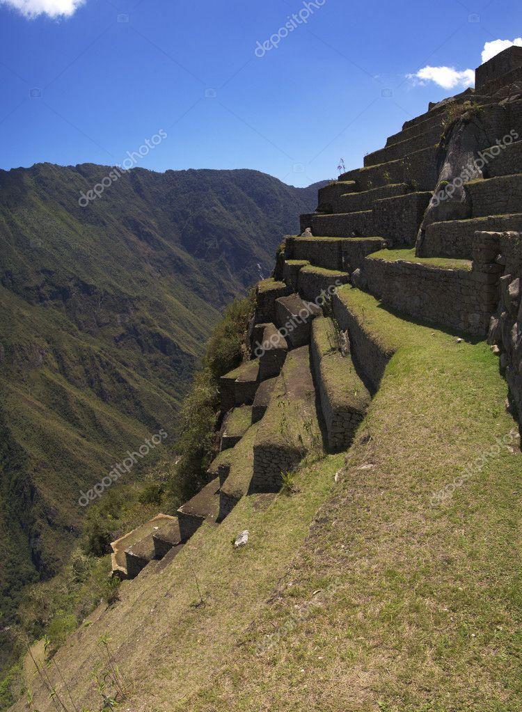 Machu Picchu terraces detail