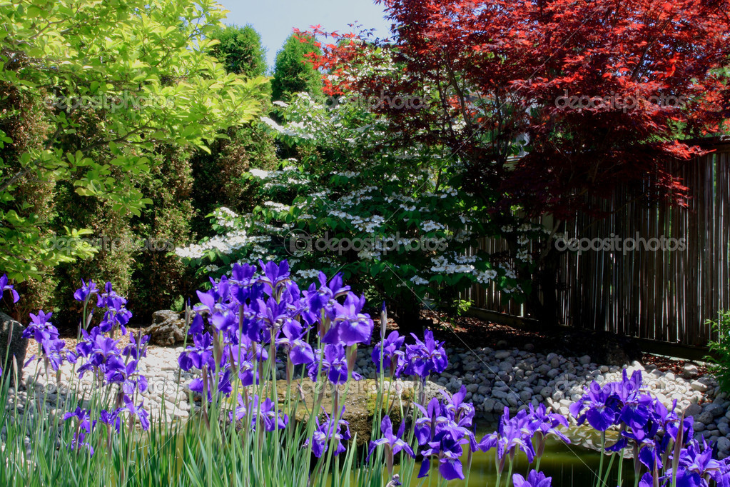Colourful corner of Japanese Garden.