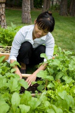 Happily in the garden.