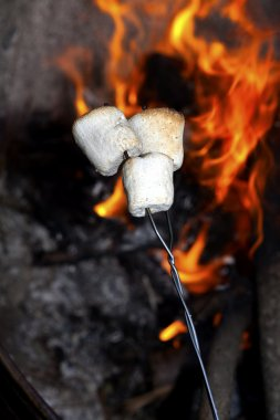 Roasting marshmallows.
