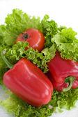 paprika salát rajče