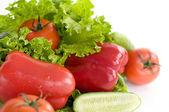 paprika salát rajče okurka