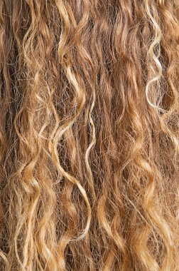 Texture of blond hair