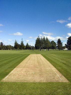 Cricket pitch in the park