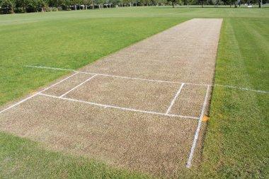 Cricket pitch sport background