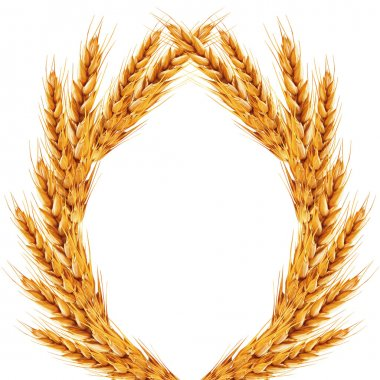 White background with ears of wheat on it