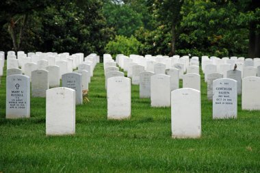 Gravestones on Arlington National Cemetery in Washington DC, USA. Headstones mark soldier graves who died in every conflict from Revolution to Sept 11. stock vector