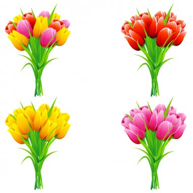 Illustration of set of bunch of tulip in a bouquet on isolated background stock vector