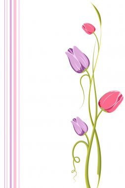 Tulip Floral Background