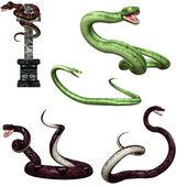Fotografia pericoloso serpente