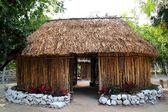 Fotografia Maya Messico casa legno cabina rifugio palapa