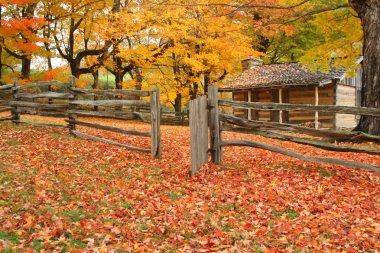 Cabin Autumn