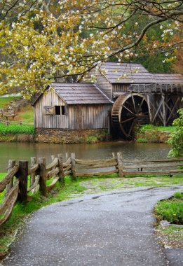 Spring at the Water Mill