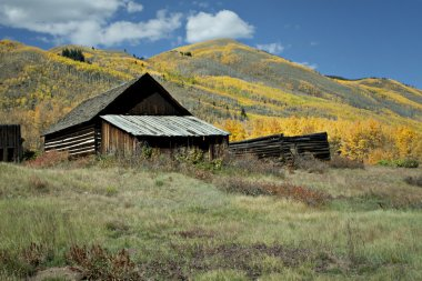 Rustic old house in Autumn season in Colorado at Ashcroft Ghost Town stock vector