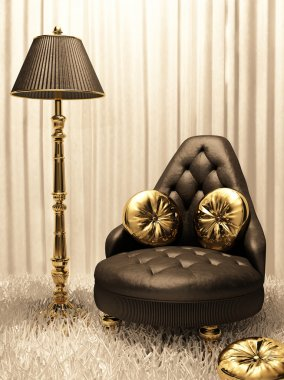 Luxurious furniture in design interior