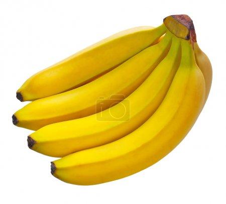 Foto de Plátanos - Imagen libre de derechos