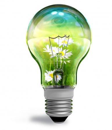 Foto de Concepto ecológico - Imagen libre de derechos