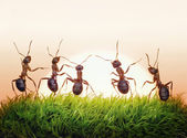 Team of ants on sunrise, joy of life, concept