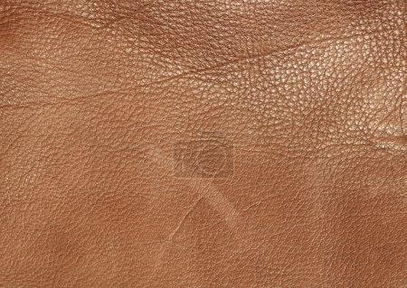 Photo pour Fond de texture cuir marron - image libre de droit