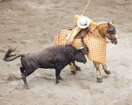 Bull and bullfighter picador
