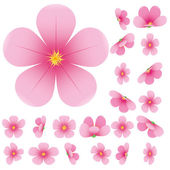 Cherry blossom flowers of sakura set pink flowers collectionvector illustration
