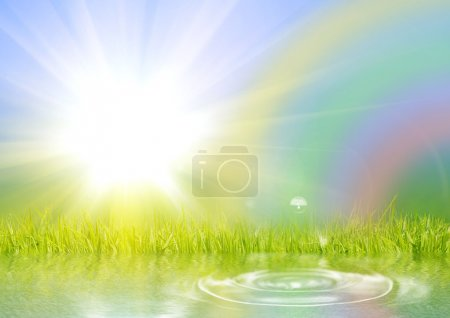 Photo for Rainbow the sun and a grass reflected in water - Royalty Free Image