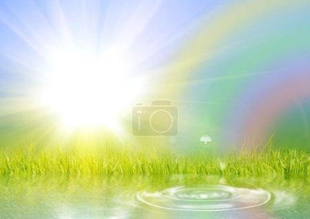 Rainbow the sun and a grass