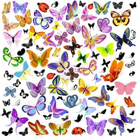 Illustration for Set of ladybug and butterfly - Royalty Free Image
