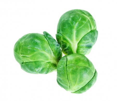 Photo for Three brussels sprouts heads isolated on white, food background - Royalty Free Image