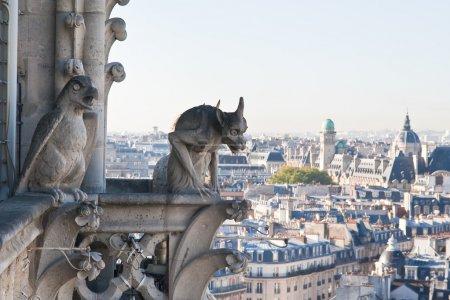 View of Paris from Notre Dame de Paris. France.