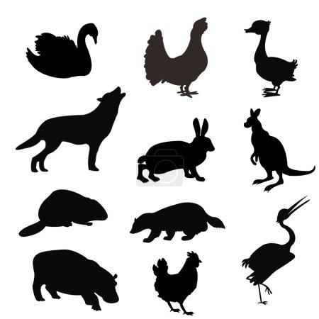 Silhouetten der Tiere und Vögel