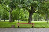 Régi zöld park