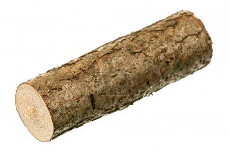 One log