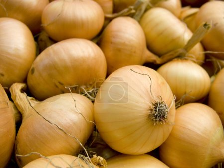 Photo for A pile of beautiful bulb onions on a counter - Royalty Free Image