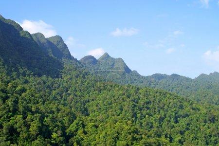 Photo pour Collines de forêt tropicale sur l'île de langkawi, Malaisie - image libre de droit