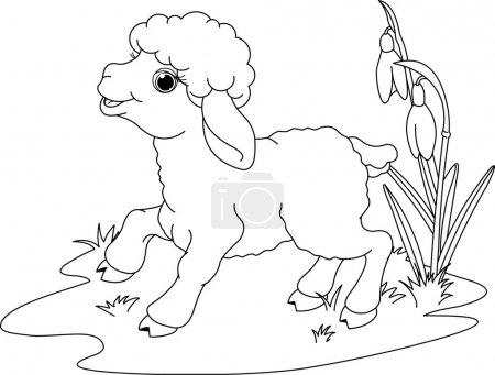 Illustration pour Agneau de Pâques sur la prairie. Coloriage - image libre de droit