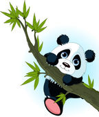 Very cute Giant panda climbing tree