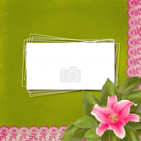 Beautiful pink lily flower on the abstract background with lace