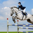 Young girl jumping with grey horse...