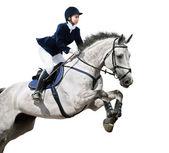 Pferdesport-jumper