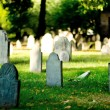 Cemetery with many tombstones on the bright day...