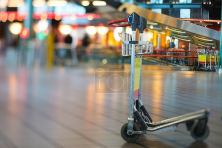 Airport Luggage Cart