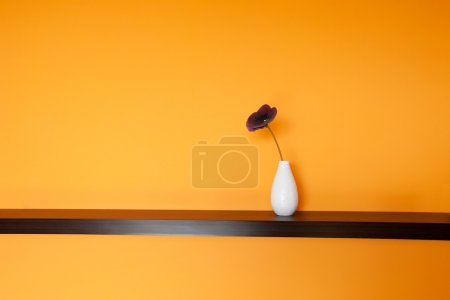 Flower in vase near wall