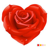 Vector red rose in the shape of heart
