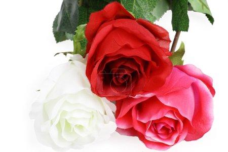 Photo pour Un beau bouquet de roses. Sur le fond blanc - image libre de droit